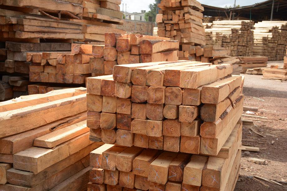 Maderas san jos venta de madera en bogot diagonal 79 - Maderas tropicales para exterior ...